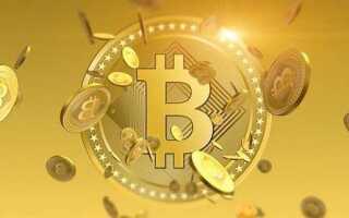 Гаманці, підтримують Bitcoin Gold (біткоіни Голд)