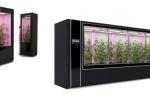 ICO Agrotechfarm: огляд, дати, відгуки