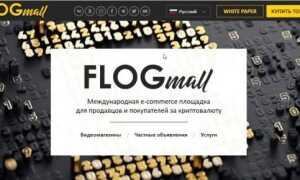 FLOGmall, огляд ICO, опис проекту