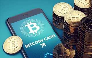 Як заробити Bitcoin Cash: алгоритм для новачка