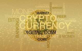 Де подивитися статус транзакції хардфорка Bitcoin Cash